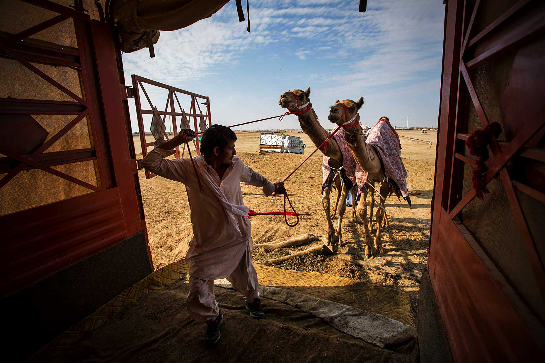 Wouter-Kingma-Web-Camel-Library-12
